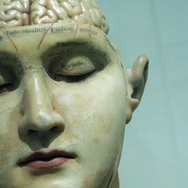 Thumbnail for Fitnesscentrum voor het brein